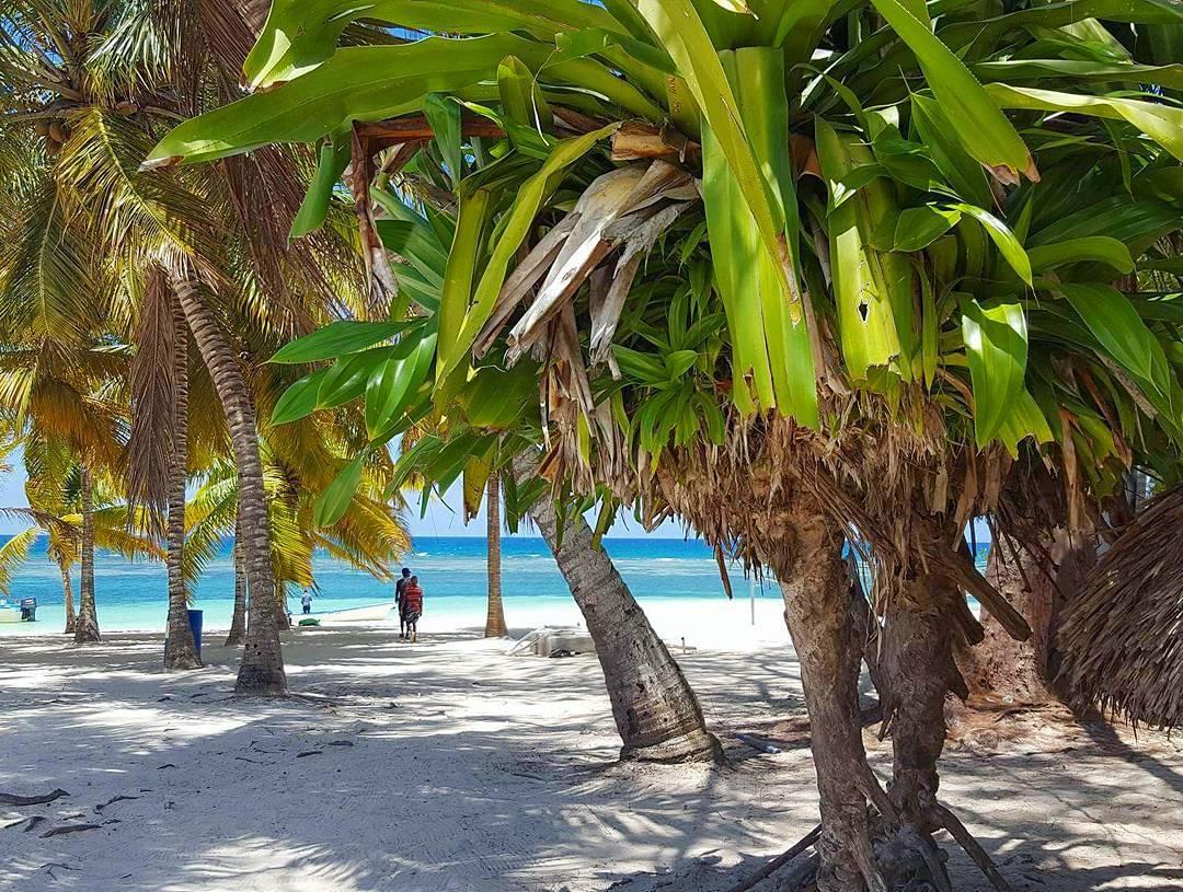 De nature aimable, chaleureuse et bienveillante, la personne qui porte le signe astrologique du Taureau apparaît généralement ouverte aux autres. Toutefois, elle aime le confort et la tranquillité alors quoi de mieux qu'une plage de sable blanc, une coco à la main et un livre dans l'autre ?